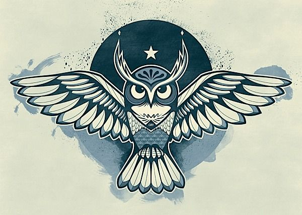 Owl Illustrations & Artworks