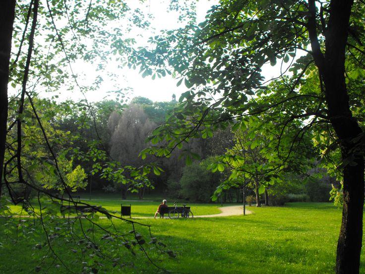 Łazienki Królewskie – zespół pałacowo-parkowy położony w rejonie Ujazdowa, w dzielnicy Śródmieście. Adres Łazienek Królewskich to ul. Agrykoli 1.   Łazienki Królewskie stanowią dziś własność Muzeum Łazienki Królewskie w Warszawie, powierzchnia zespołu pałacowo-parkowego wynosi 76 hektarów. Park jest ogrodzony i zamykany na noc, główne wejście na jego teren prowadzą od strony Alei Ujazdowskich (dwa), Agrykoli oraz Gagarina.