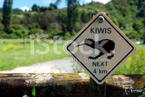 Kiwis Sign royalty-free stock photo
