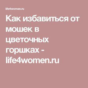 Как избавиться от мошек в цветочных горшках - life4women.ru