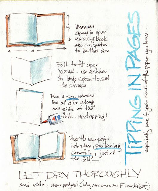 The triplets of belleville essay