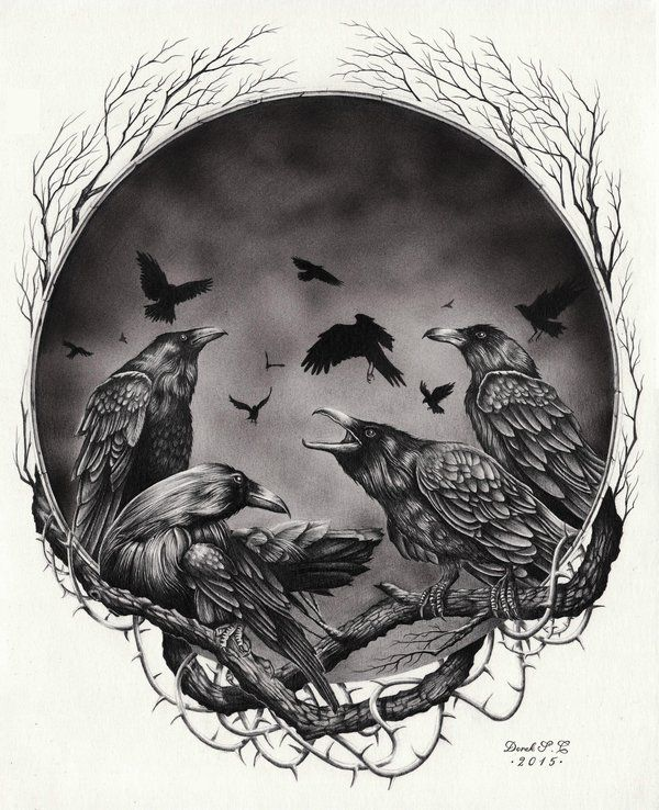 Untitled - Crows by Derek-Castro on DeviantArt