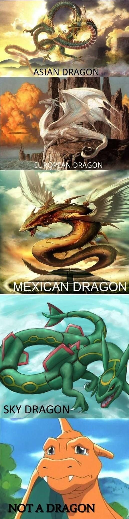 Settling the Dragon Debate once and for all.