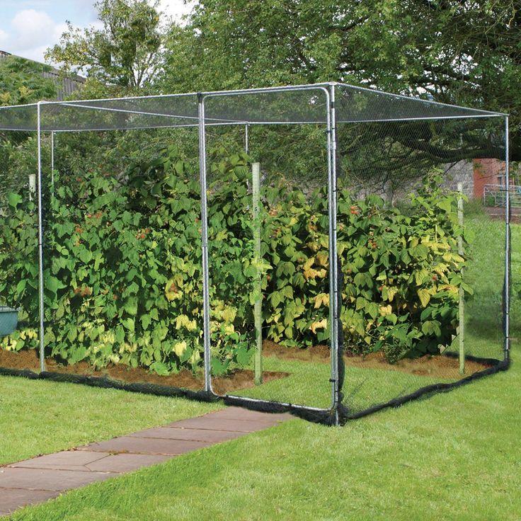 Economy Fruit Cage