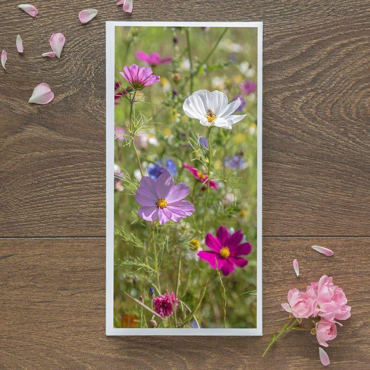 Single Blank Card by landscape photographer Nina K Claridge - Cosmos