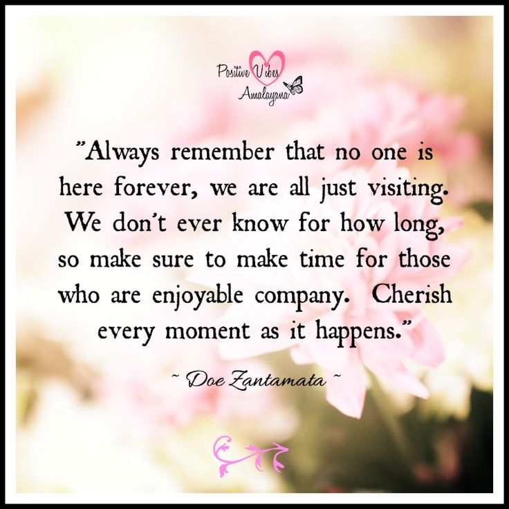 """""""Always remember that no one is here forever, we are all just visiting.  We don't ever know for how long, so make sure to make time for those who are enjoyable company.  Cherish every moment as it happens.""""  ~ Doe Zantamata"""