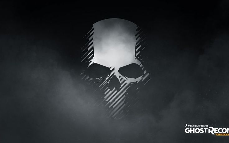 Tom Clancy's Ghost Recon: Wildlands video game, 2017 game, skull