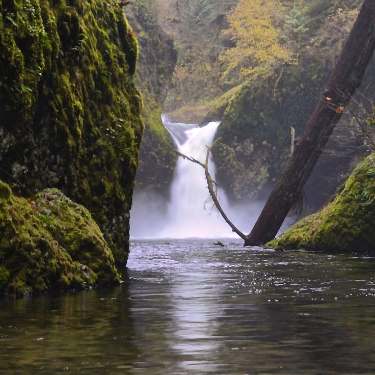 Punchbowl Falls on Eagle Creek a tributary