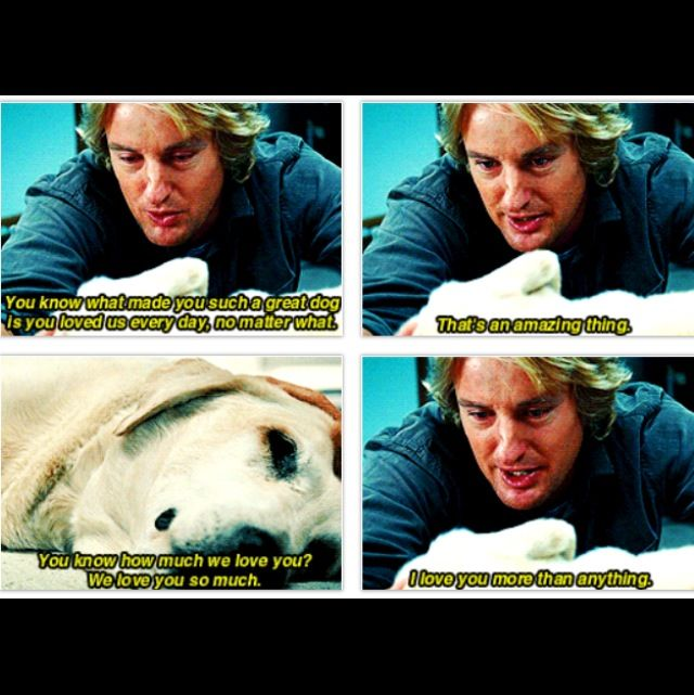 Marley & Me. Try to watch this scene with out crying.