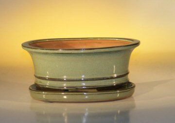 """Bonsai Boy's Ceramic Bonsai Pot With Attached Humidity Drip tray-Professional Series Oval 8 5 x 6 5 x 3 5 by Bonsai Boy. $19.25. Blue/Green bonsai pot, glazed, oval. Measures 8.5"""" x 6.5"""" x 3.5"""". Imported ceramic bonsai pot.  Note: Our professional Series Pots are a little deeper than other pots of the same length and have groove marks on the sides and bottom of the pot to help anchor the roots. Professional Series Pots also come with heavy duty drainage hole covers and..."""