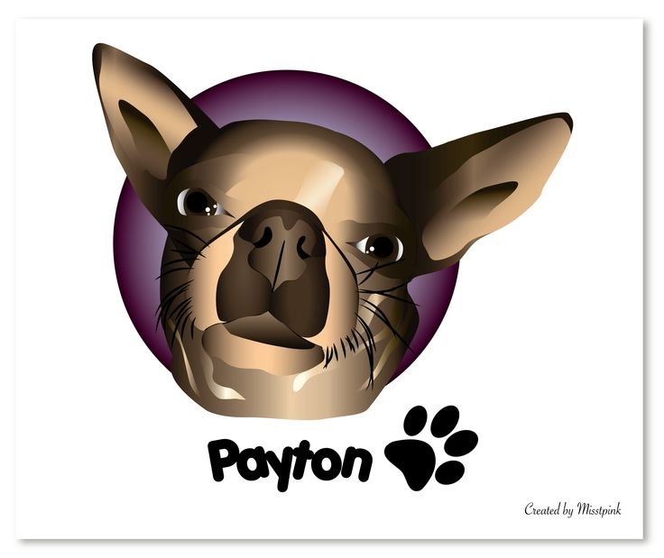 My 1st illustration of a dog. My boss is obsessed with her Chiwawa Payton. Christmas gift for my boss. #chiwawa #chihuahua #miniature #dog #animal #illustration #vector #closeup #personalized #gift #boss
