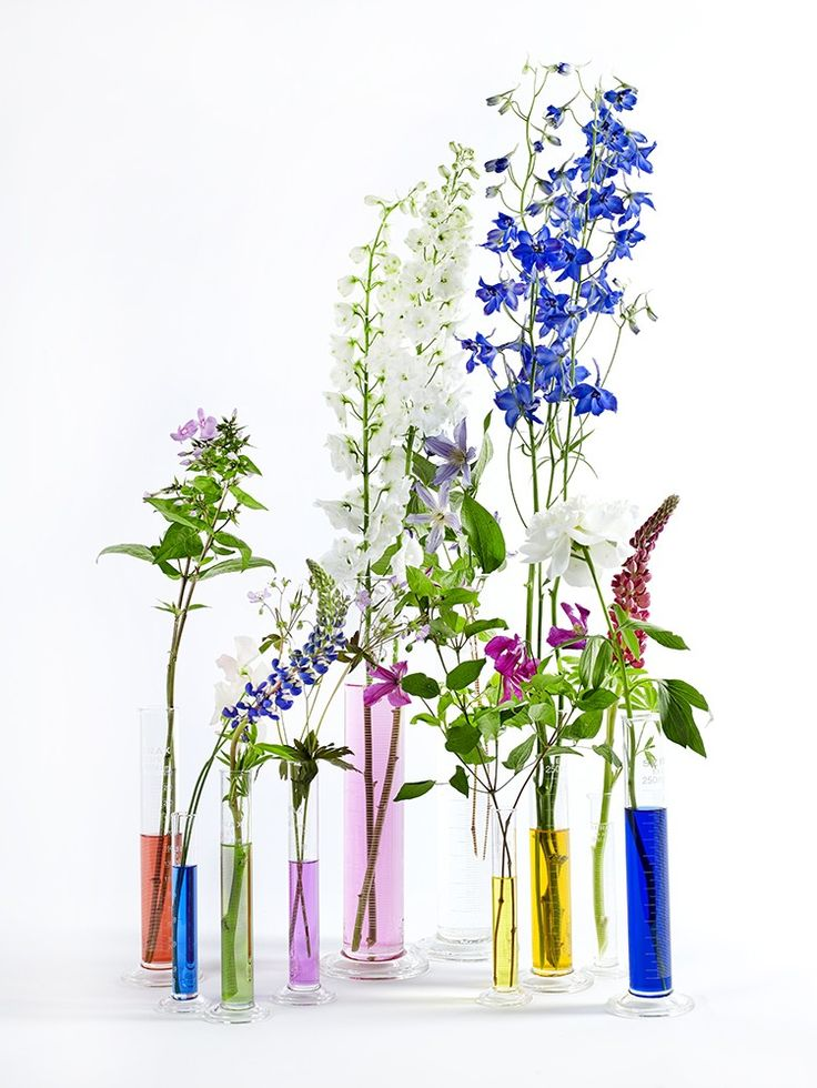 Experiment with colour in this collection of vases by design platform Serax. Read the full story in issue four of Warehouse Home interior design magazine Image courtesy of Serax