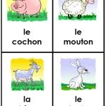 free french animal friends cards for little kids language learning.....prentjes om te gebruiken voor franse woordjes of voor woordprentjes.
