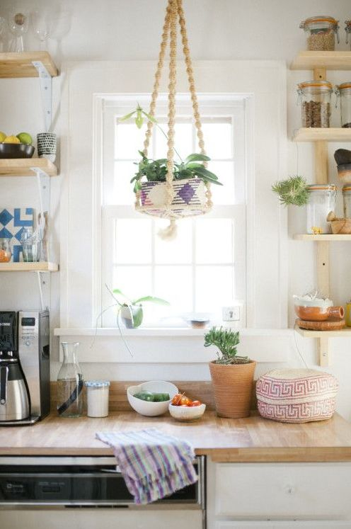 Find This Pin And More On |Kitchen Plants| By Thesillnyc.
