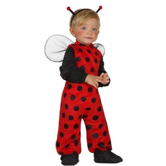 Lieveheersbeestje kostuum voor peuters. 4-delig lieveheersbeest pakje dat bestaat uit het pak, de vleugels, de schoenhoesjes en de diadeem. Materiaal: 100% polyester.