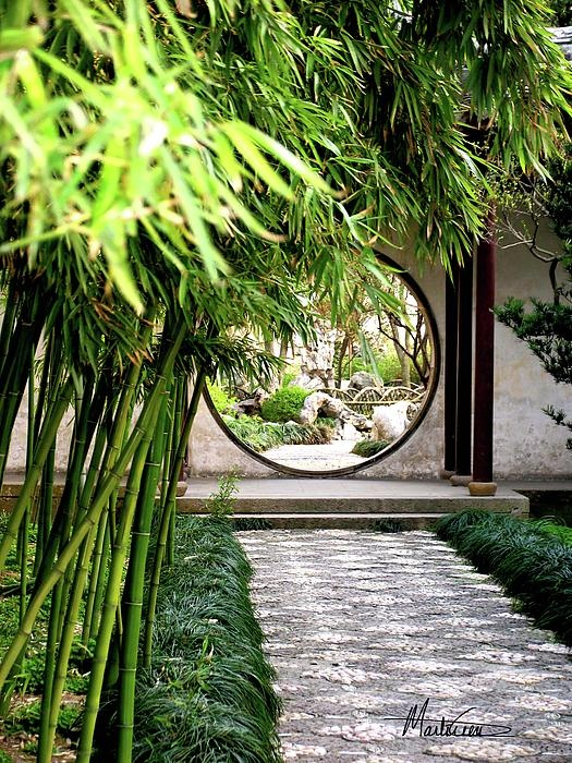 """BBC Boracay says: """" Nice entrance to your yard. The round gate intense your interest to know more about this place - the high bamboo wall provides a touch of hidden garden..."""""""