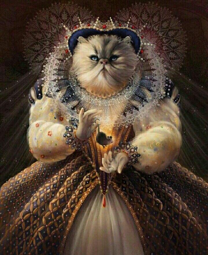 картинки элегантный кот заказ нужные вам