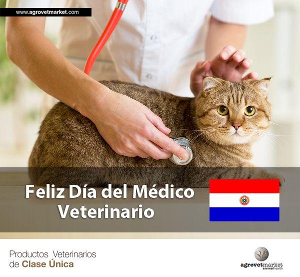 ¡Un gran saludo a todos nuestros amigos en Paraguay! - 12 de agosto.