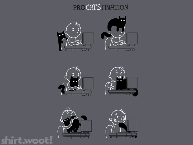 this is some, esp the one where the cat is on the lap