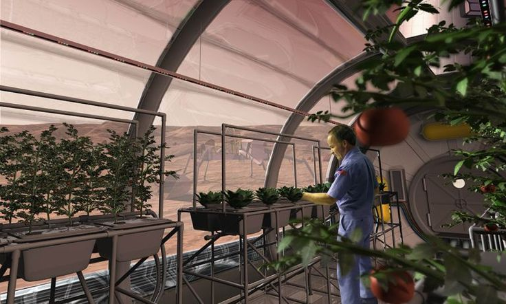 Mars spaghetti maker feeds Earthlings first | Particle    Could humans grow food on Mars?
