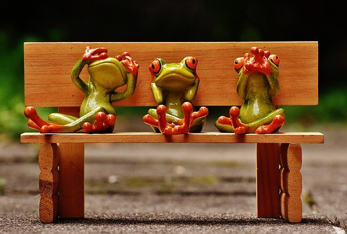 Frogs, Not See, Not Hear