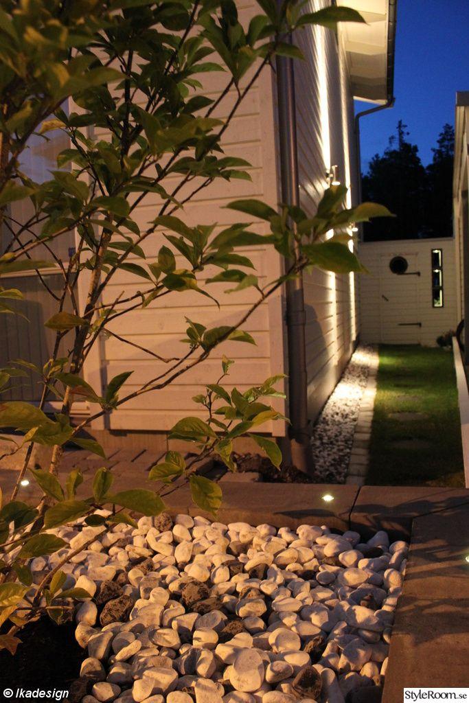 hus,trädgård,uteplats,utebelysning