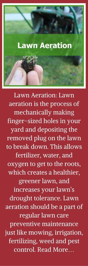 Lawn Aeration: Lawn aeration is the process of mechanically making finger-sized holes in your yard and depositing the removed plug on the lawn to break down. This allows fertilizer, water, and oxygen to get to the roots, which creates a healthier, greener lawn, and increases your lawn's drought tolerance. Lawn aeration should be a part of regular lawn care preventive maintenance just like mowing, irrigation, fertilizing, weed and pest control. Read More…