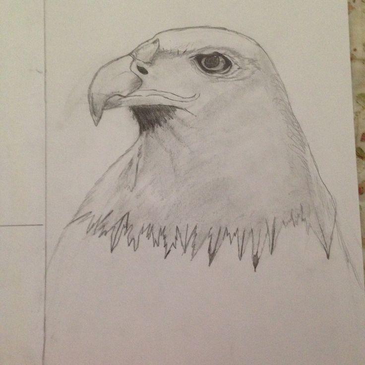 Eagle (mine) was very hard.