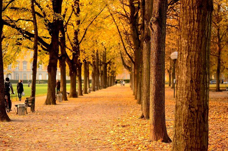 Autumn 2012, Bonn, Germany