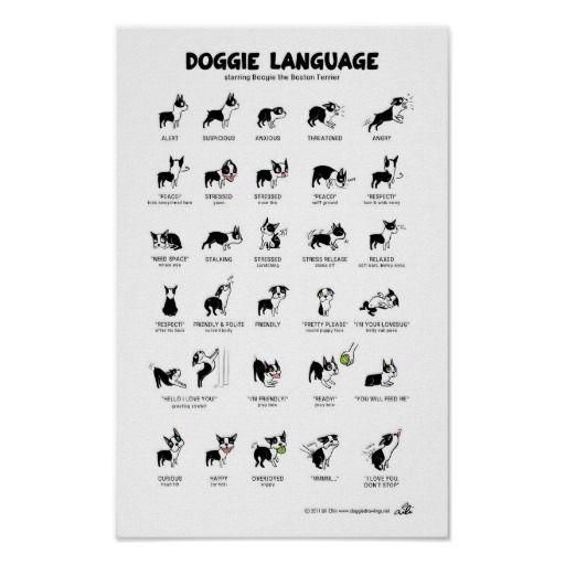 DOGGIE LANGUAGE Large Poster – Maya Echegaray