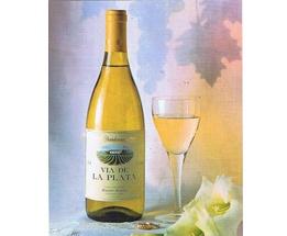 Cava-Vino || Vino blanco Chadornnay    Vía de la Plata. Un vino base de calidad, insuperable para nuestros cavas de variedad exclusiva Chardonnay. Se destina una parte de este preciado líquido para completar la gama de nuestros productos con vino de la variedad Chardonnay.  Caja de 6 unidades.