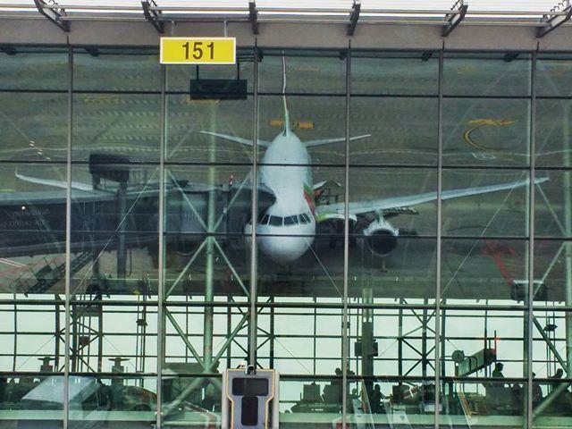 Que vaidoso o avião da TAP #flytap #bruxellesairport #mirror #tapportugal