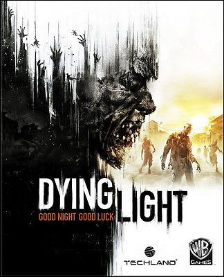 002 Dying Light - Open World Survival Horror Video Game 24x30 Poster