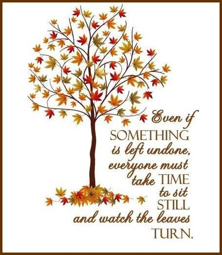 Autumn Quote From Elizabeth Lawrence    I Absolutely Love Fall And Leaves  Changing! Perfect Quote For This Time Of Year!