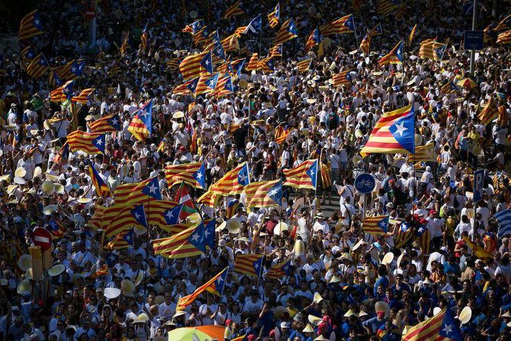 El apoyo a la independencia cae ocho puntos hasta el 40,8%   Cataluña   EL PAÍS