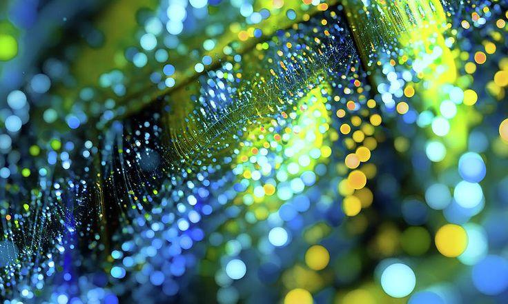 Green Yellow Bokeh Digital Art by Oksana Ariskina