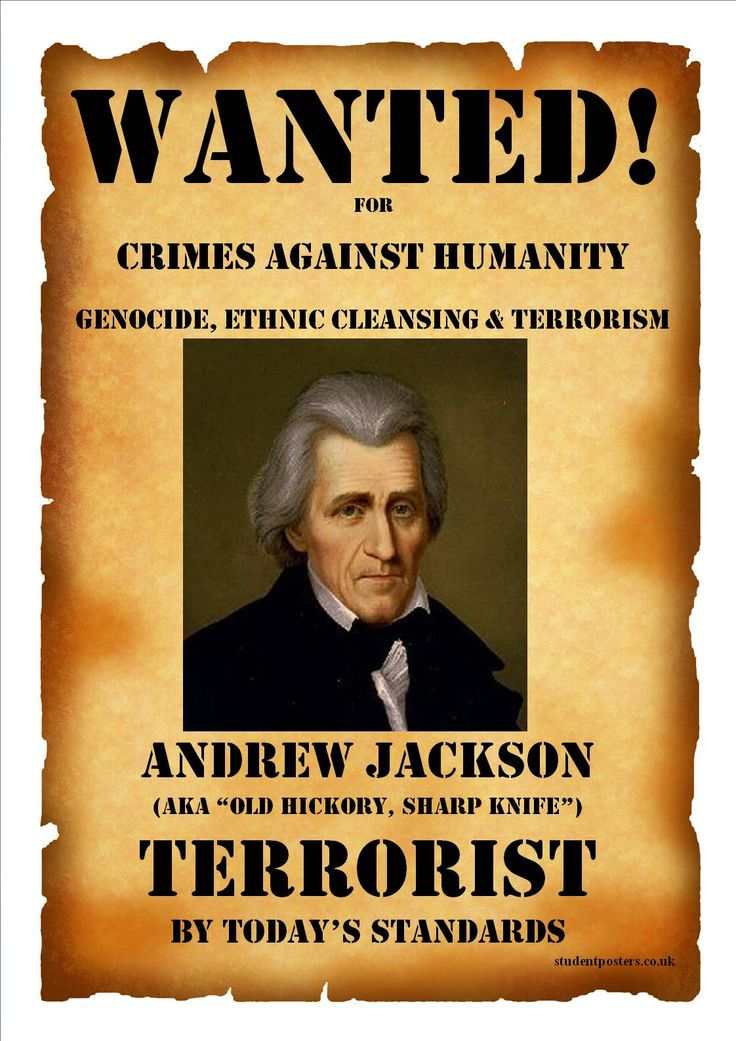 A critique of andrew jacksons us presidency