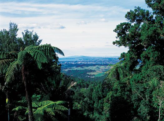 City Escape Package  Waitakere Estate, our secluded boutique hotel has plenty to offer city escapees  Enjoy stylish accommodation, delectable cuisine, maybe a cocktail by the pool.  The Escape Package for 2 people is only $295 and includes  • A three course dinner for two from a set menu • Accommodation for one night in a Deluxe Room  • Cooked breakfast for two