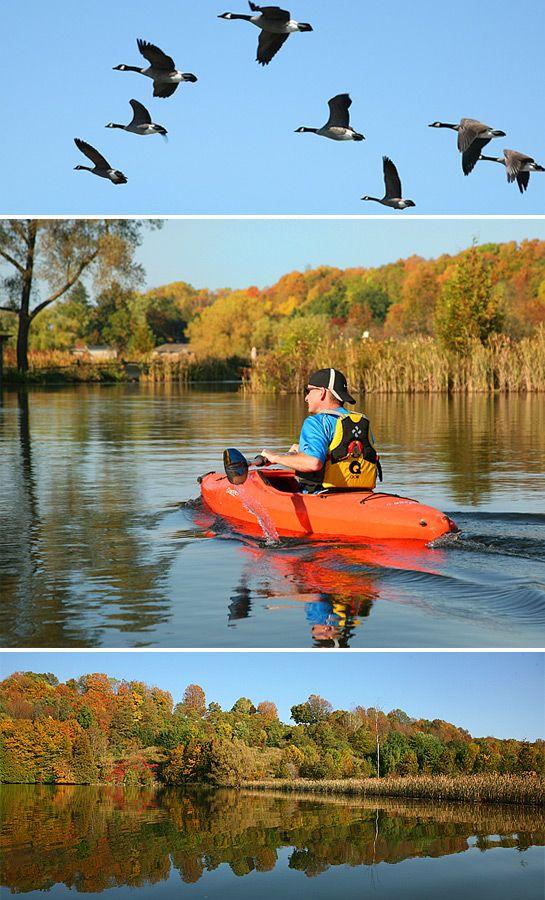 Kayak trip on Sydenham River