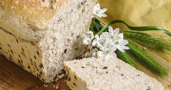 Venerdì sera, dopo l'inaugurazione dell'esposizione di Irene Podgornik , abbiamo mangiato il pane al farro con pecorino e miele di aca...