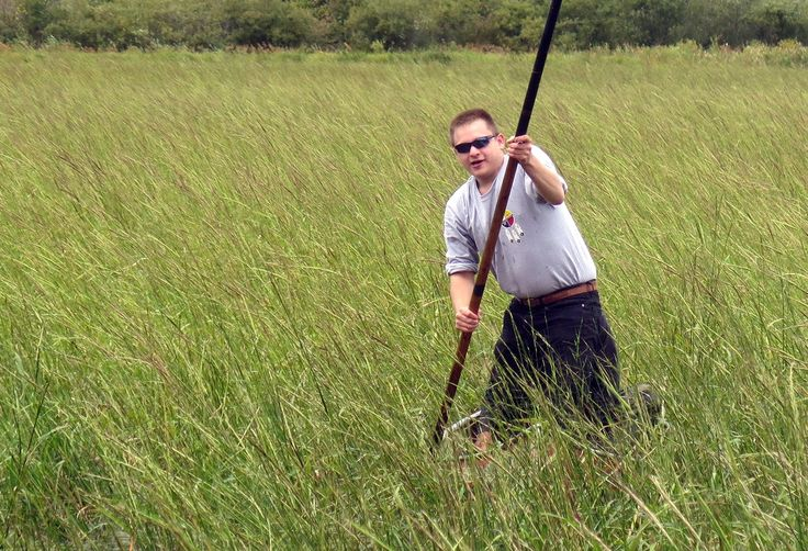 A bountiful wild rice harvest is winding down in northern Minnesota. On the Fond du Lac Reservation, where wild rice lakes were nearly destroyed by drainage ditches, the tribe has worked for 20 years to bring the rice back.