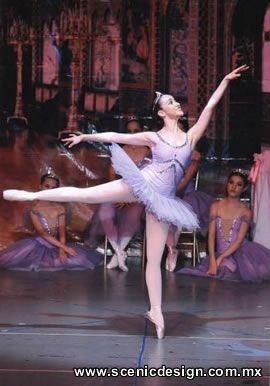 Vestuario Para Ballet - Tutu