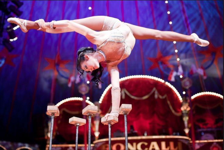 Clio at the circus Roncalli