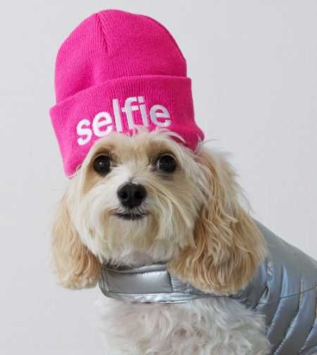 American Beagle Outfitters Selfie Beanie