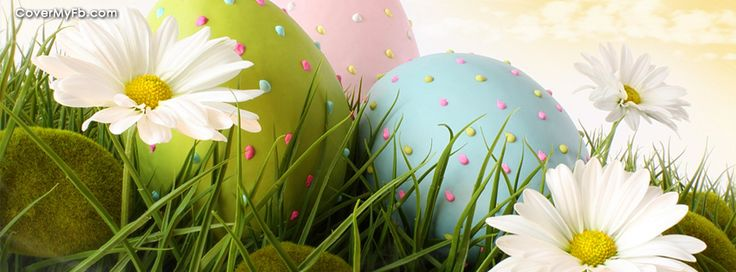 Pastel Eggs And Daisies Facebook Covers, Pastel Eggs And Daisies FB Covers, Pastel Eggs And Daisies Facebook Timeline Covers, Pastel Eggs And Daisies Facebook Cover Images