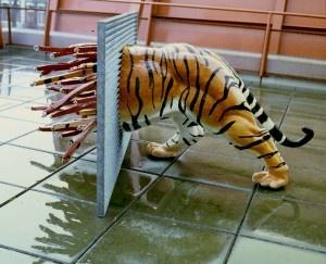 tijger merijn bolink