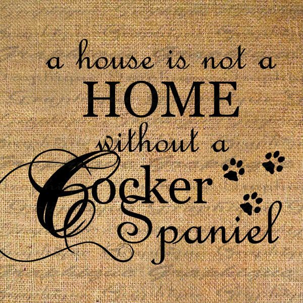 HOME wo COCKER SPANIEL Dog Text Word Calligraphy by Graphique