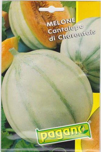 Melone Cantalupo di Charentais Melon Seeds - 5 grams