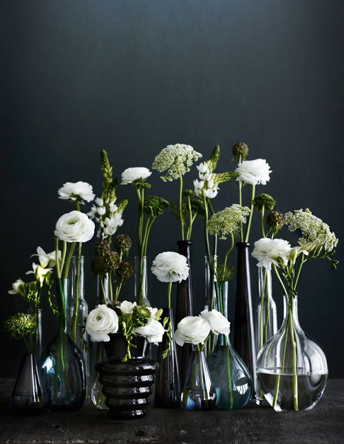white blooms // this reminds me of our wedding reception