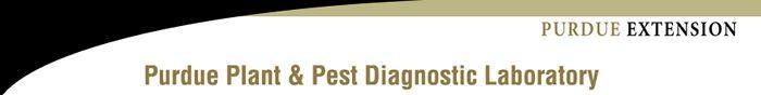 The Purdue Plant and Pest Diagnostic Laboratory